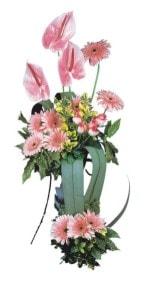Ankara güvenli kaliteli hızlı çiçek  Pembe Antoryum Harikalar Rüyasi