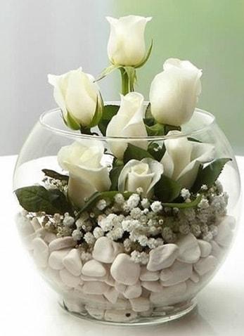 Beyaz Mutluluk 9 beyaz gül fanusta  Ankara çiçek siparişi sitesi