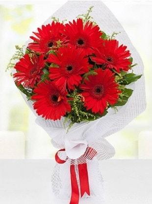 Kırmızı Gelbera Buketi  Ankara internetten çiçek siparişi