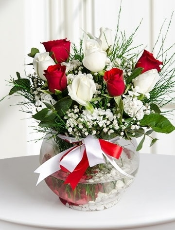 Aşk Küresi  5 beyaz 5 kırmızı gül fanusta  Ankara internetten çiçek satışı