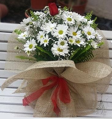 Papatya 1 adet kırmızı gül buketi  Ankara çiçekçiler