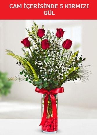 Cam içerisinde 5 adet kırmızı gül  Ankara çiçek siparişi sitesi