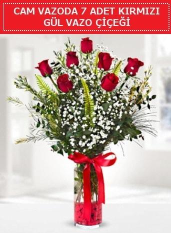 Cam vazoda 7 adet kırmızı gül çiçeği  Ankara çiçek gönderme sitemiz güvenlidir