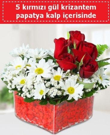 mika kalp içerisinde 5 kırmızı gül papatya  Ankara çiçek gönderme