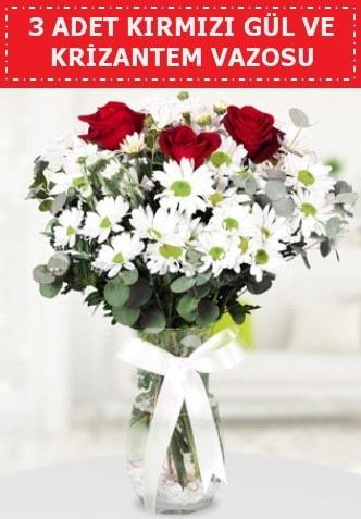 3 kırmızı gül ve camda krizantem çiçekleri  Ankara çiçek gönderme