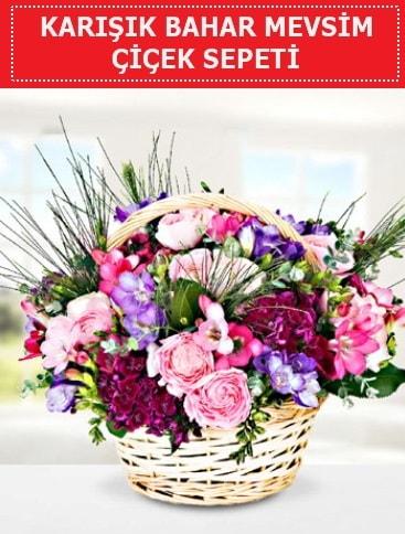 Karışık mevsim bahar çiçekleri  Ankara ucuz çiçek gönder