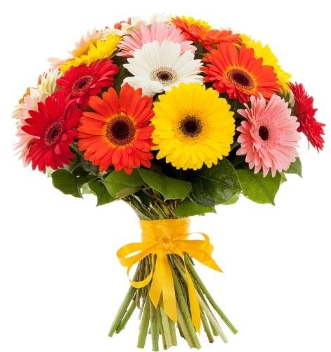 Gerbera demeti buketi  Ankara çiçek satışı