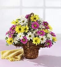 Ankara çiçekçiler  Mevsim çiçekleri sepeti